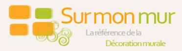 logo-surmonmur